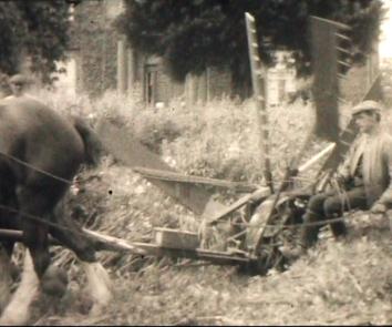 B&W 1920's / 1930's Farming